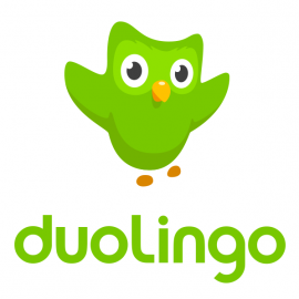 My experience using the Duolingo German language course