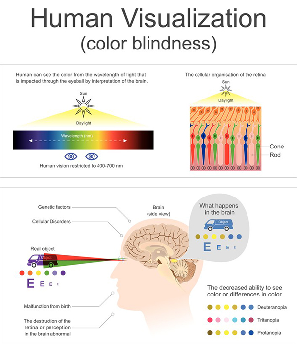 colour blindness chart